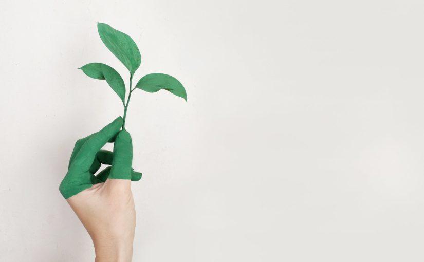Ecologie et vapotage : vapoter c'est mieux pour la planète !