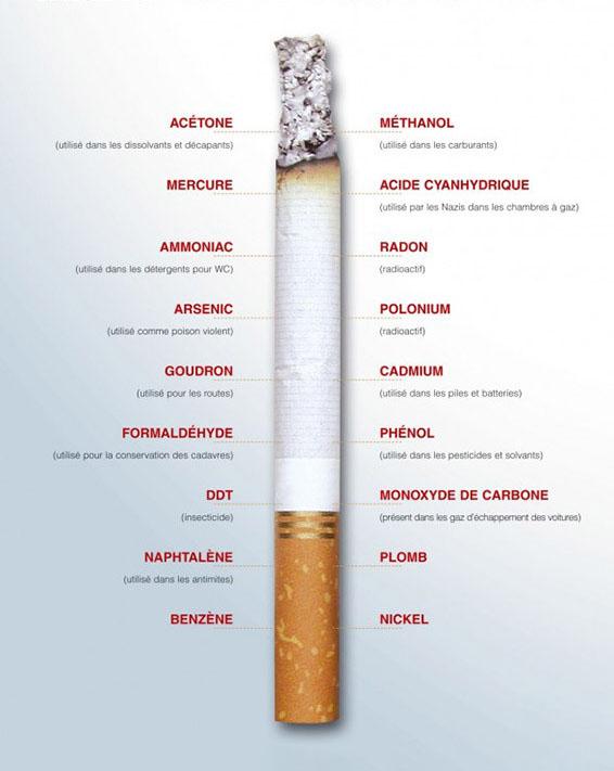 anatomie-cigarette-danger